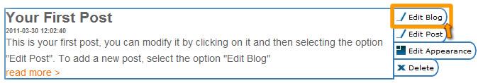 Edit Blog