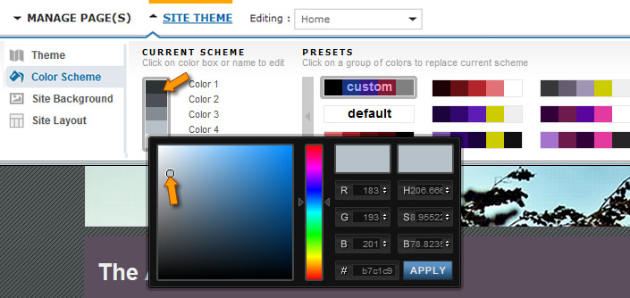 Custom Color Selection